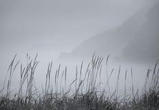 Nebbia di autunno Immagini Stock Libere da Diritti