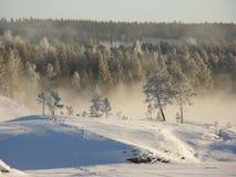 Nebbia di inverno Fotografia Stock