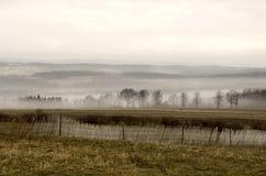 Nebbia di inverno di mattina sul fianco di una montagna fotografia stock