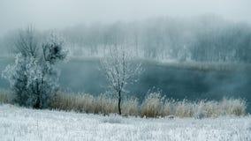 Nebbia di inverno nel fiume Fotografie Stock