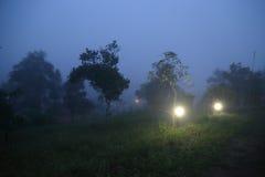 Nebbia di Khaokho Nebbia del mare Fotografia Stock