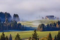 Nebbia di mattina in alpi austriache Immagine Stock Libera da Diritti