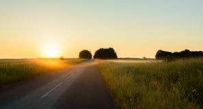 Nebbia di mattina attraverso la strada un la mattina soleggiata della molla Immagine Stock