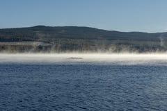 Nebbia di mattina che lascia il sole della superficie dell'acqua di mattina immagine stock libera da diritti
