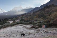 Nebbia di mattina dei picchi di montagne, villaggio di Tengboche, Nepal Fotografie Stock Libere da Diritti