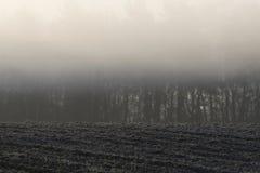 Nebbia di mattina sopra terreno arabile Immagine Stock Libera da Diritti