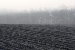 Nebbia di mattina sopra terreno arabile Immagini Stock Libere da Diritti