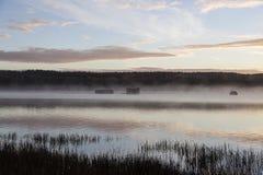 Nebbia di mattina su un fiume e su un'alba Immagini Stock Libere da Diritti