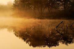 Nebbia di mattina sul fiume Fotografie Stock Libere da Diritti