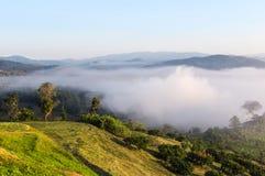 Nebbia di mattina sulla foresta pluviale tropicale dalla cima della collina Fotografia Stock Libera da Diritti