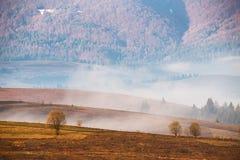 Nebbia di mattina in valle della montagna Colline nebbiose Fotografia Stock Libera da Diritti