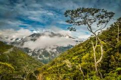Nebbia di mattina in Wamena Fotografia Stock