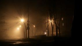Nebbia di notte sulle vie Fotografia Stock Libera da Diritti