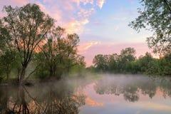 Nebbia e cielo caldo sopra il fiume di Narew, Polonia. Fotografia Stock
