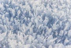 Nebbia e ghiaccio sul percorso Immagini Stock