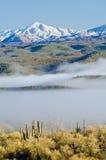 Nebbia e picchi di Snowy Fotografia Stock