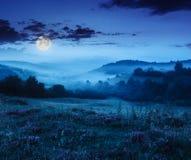 Nebbia fredda in montagne sulla foresta alla notte fotografia stock