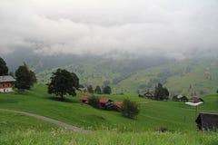 Nebbia in Grindelwald, Svizzera Fotografia Stock