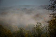 Nebbia mistica nelle montagne Fotografia Stock