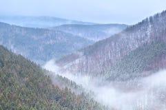 Nebbia in montagne di Harz di inverno Fotografia Stock Libera da Diritti