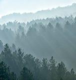 Nebbia nebbiosa Immagine Stock