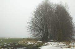 Nebbia nel campo Fotografia Stock Libera da Diritti