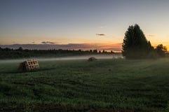 Nebbia nel campo al tramonto Fotografia Stock
