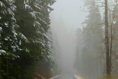 Nebbia nel passaggio Fotografia Stock