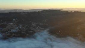 Nebbia nell'area della baia, California del Nord di primo mattino e di alba archivi video
