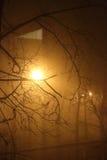 Nebbia nella città Fotografia Stock