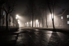 Nebbia nella città di notte Fotografia Stock Libera da Diritti