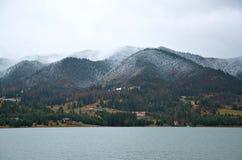 Nebbia nella foresta Bistrita Romania Fotografia Stock Libera da Diritti