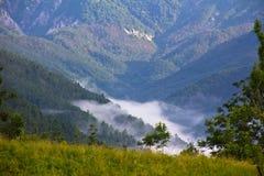 Nebbia nella valle Immagini Stock Libere da Diritti