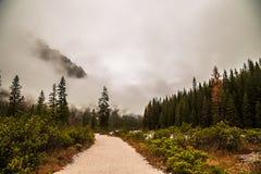 Nebbia nella valle Fotografia Stock Libera da Diritti