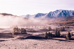 Nebbia nella valle della montagna Nuvole di nebbia sotto il cielo rosa nelle prime ore del mattino Fotografia Stock