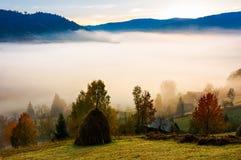 Nebbia nella valle rurale Fotografia Stock