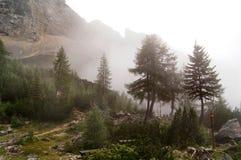 Nebbia nelle alpi di Kamnik Immagine Stock