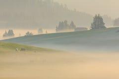 Nebbia nelle alpi, dolomia, Italia di mattina Fotografia Stock Libera da Diritti