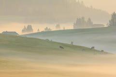 Nebbia nelle alpi, dolomia, Italia di mattina Fotografie Stock Libere da Diritti
