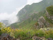 Nebbia nelle montagne Fotografia Stock
