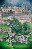 Nebbia, piante, pietre e rovine antiche nelle montagne Immagini Stock