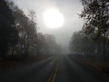 Nebbia sinistra di mattina Fotografie Stock Libere da Diritti