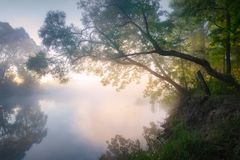 Nebbia sopra il fiume Alba dal fiume Immagini Stock Libere da Diritti