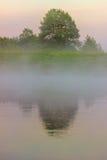 Nebbia sopra il fiume Primo mattino Immagini Stock Libere da Diritti
