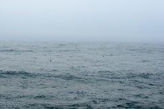 Nebbia sopra il mare o l'oceano Fotografie Stock Libere da Diritti