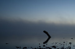 Nebbia sopra l'acqua Fotografie Stock