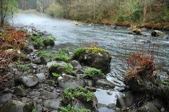 Nebbia sopra la curva del fiume immagine stock libera da diritti