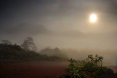 Nebbia sopra la montagna Immagine Stock