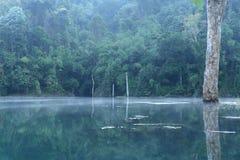 Nebbia sopra la superficie dell'acqua Fotografia Stock Libera da Diritti