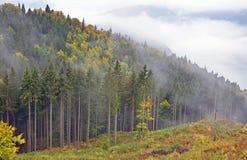 Nebbia sopra la valle Fotografia Stock